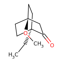 2d structure of 1-ethyl-4-methoxybicyclo[2.2.2]octan-2-one